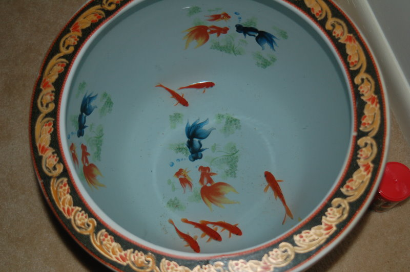 Looking down at goldfish swimming in a Chinese goldfish pot