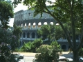 The Coloseum, Rome