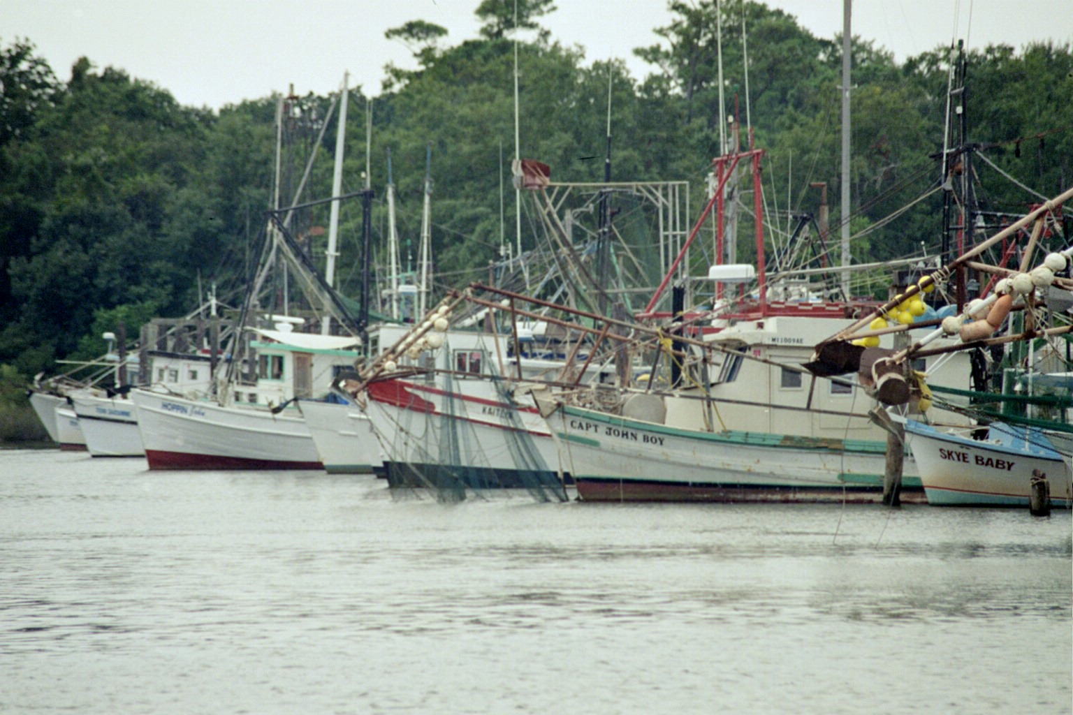 Shrimping Boats All In A Row