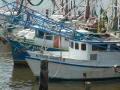 Louisiana Fishing Boats