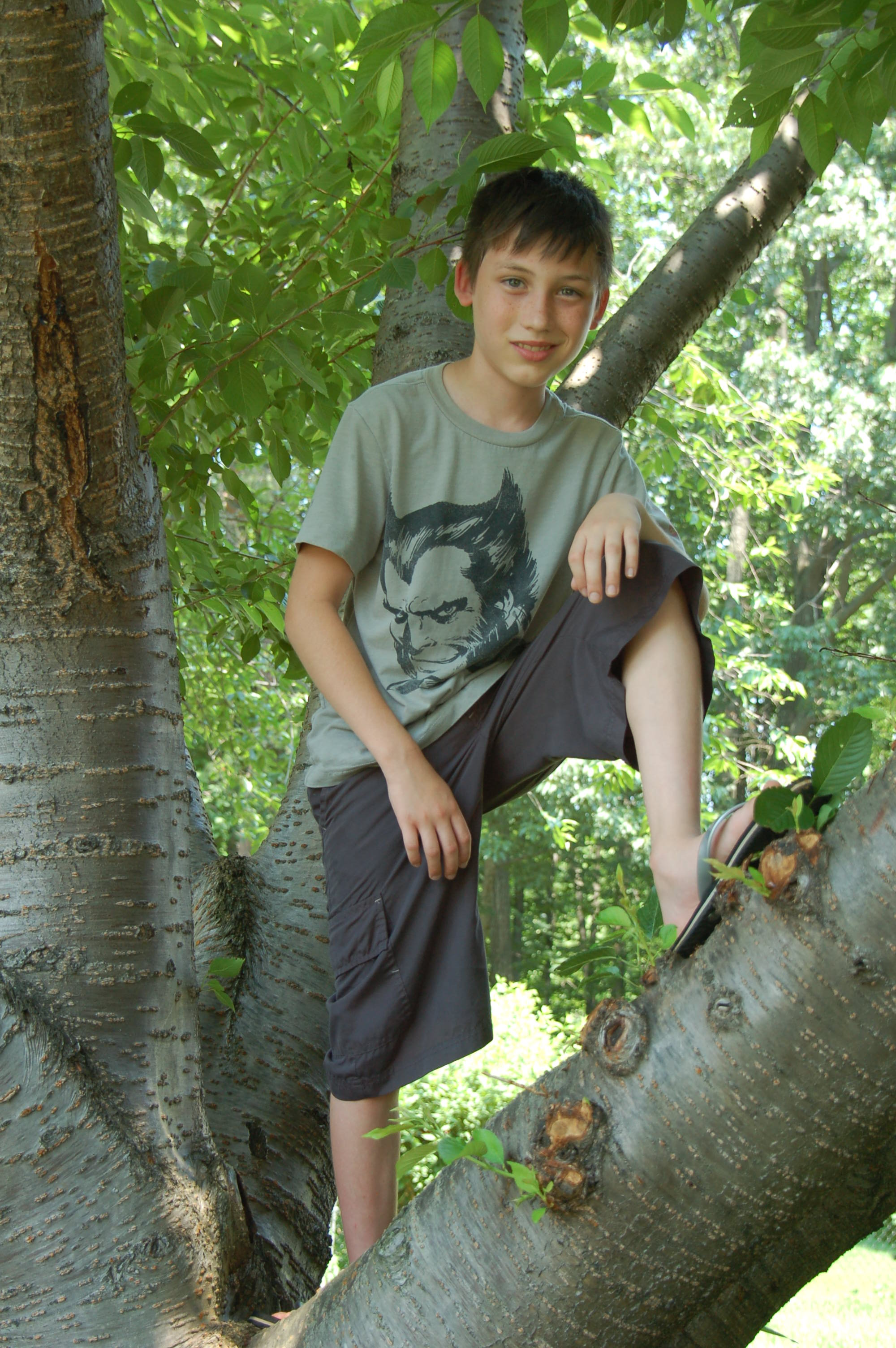 Gabe In The Tree
