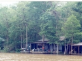 Honeywell Swamps Fish Camp