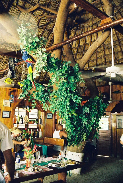 The best-known restaurant in San Pedro Town, Ambergris Caye