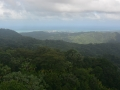 Looking Out at the Rain Forest From Yokahu Tower