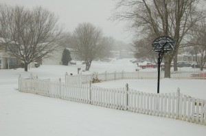 Snowy Neighborhood