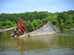 Shipwreck In Mallows Bay