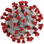 A CDC Coronavirus image, used to illustrate my COVID-19 Timeline Project
